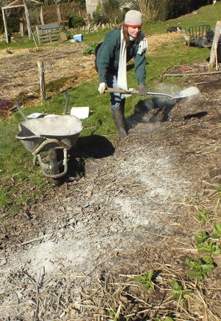 utiliser votre cendre de bois dans le jardin