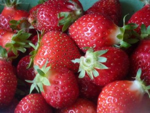 fraises cirafine
