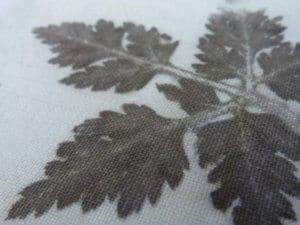 teinture végétale sur tissu