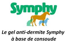 symphy